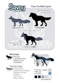 Wolf Vs Dog Size Chart Savoy Size Chart By Tanidareal Fur Affinity Dot Net