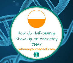 Dna Chart For Half Siblings How Do Half Siblings Show Up On Ancestry Dna Who Are You