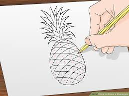 pineapple drawing color. pineapple drawing color