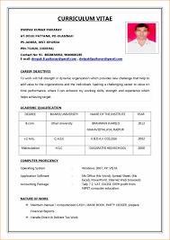 Best Professional Resume Format Inspiration Resume Format For Job Interview Doc Best Professional Resume