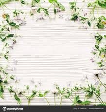 beautiful daisies and lilac flowers frame on rustic white wooden background top view stock image