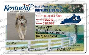 Id Pet License Kentucky Pet Kentucky License Id Kentucky