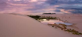 oregon coast living oregon beaches dunes tide pools eugene cascades oregon coast