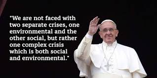 Pope Francis Quotes Gorgeous 48 Powerful Quotes By Pope Francis On Climate Change And The Environment