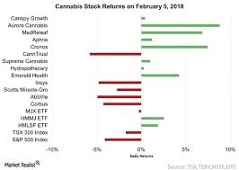 Cannabis Stocks Rise While The Market Plummets On February 5