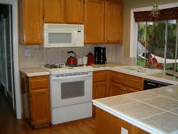 can you spray paint kitchen cabinets pictures astonishing best sprayer for professional cabinet image of also fascinating moths flies stain on wood 2018