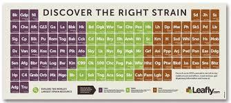 Sativa Indica Strain Chart The 53 Best Weed Strains Honest Marijuana