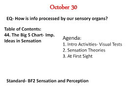 Sensation Chart October 28 2013 Eq How Is Information From Our Sensory