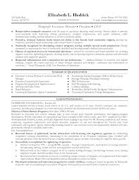 Non Profit Ceo Resume Examples