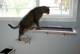 cat safe furniture. Sq-cat-burnside.jpg Cat Safe Furniture P