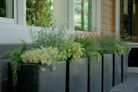 Small Picture Staggering Herb Gardening For Beginners Decorating Ideas Gallery