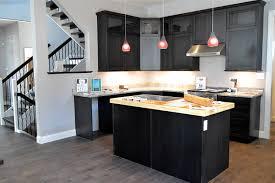 Inspiring Efficient Kitchen Design Concept Orangearts Amusing Modern Black  And White With Dark Cabinetry Island Sink