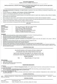It Team Lead Resume Sample Manager Resume Template Free Samples