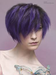 Purple Hair Style hairstyles ideas 4205 by wearticles.com