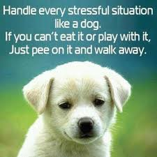 Stress Relief Quotes Best 48 Quotes For Stress Relief