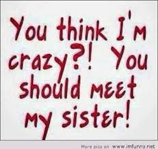Funny Sibling Quotes Awesome Sister Quotes