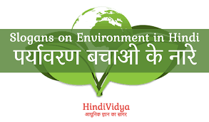 environmental protection essay in hindi edu essay