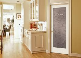kitchen gl pantry door design ideas