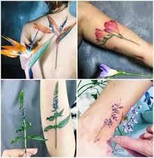 известные украинские татуировщицы о которых нужно знать 23 59comua