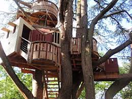 treehouse. Tree House Treehouse