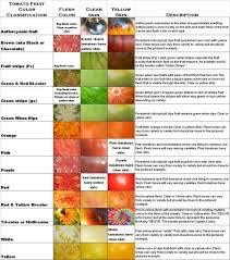 Tomato Color Chart Tomato Classification Chart Tomato Garden Lawn Garden