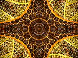 The Hive Design Fractal Art Blog Trm Design Co The Fractal Menagerie