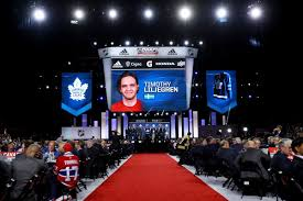 Toronto Maple Leafs Depth Chart Updated Depth Chart And Pipeline List Pension Plan Puppets