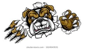 mean bulldog wallpaper. Exellent Mean A Mean Bulldog Dog Angry Animal Sports Mascot Cartoon Character Ripping  Through The Background And Mean Bulldog Wallpaper Shutterstock