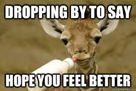 giraffe feel better memes | quickmeme via Relatably.com