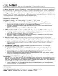 Resume Template For Internal Promotion Resume For Study