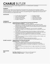 Hr Director Resume Examples Professional Resume For Hr Manager