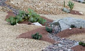 Small Picture Unique Garden Ideas Arizona To In The Desert What You Should Plant