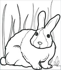 Cute Bunny Coloring Pages To Print At Free Bunny Rabbit Coloring