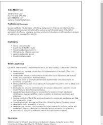 Microsoft Excel Resume Template New Professional Excel Vba Developer