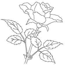 Click on the free flower colour page you would like to print or save to your computer. Top 47 Free Printable Flowers Coloring Pages Online