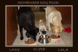 Dog Food Rating Chart 2013 Best Dog Food Comparison Chart Better Food For Dogs