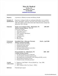 Resume Professional Summary Professional Summary For Resume For Medical Assistant Resume 67