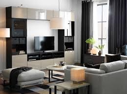 Ikea For Living Room Choice Living Room Gallery Living Room Ikea