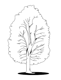 Small Picture Tree In Fall Coloring Page Coloring Pages