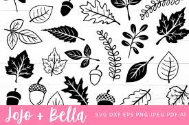 Choose from 3400+ leaf icon graphic resources and download in the form of png, eps, ai or psd. Fall Leaves Svg Leaves Svg Fall Svg 904722 Cut Files Design Bundles
