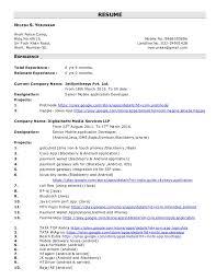 Resume Play Gorgeous Nilesh Application Developer Resume
