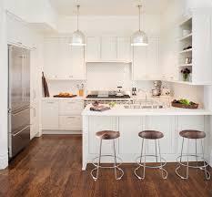 noe valley kitchen transitional kitchen