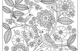 Flower Garden Coloring Page Upcomingconcertsincalgaryinfo