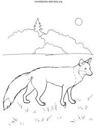 Disegni Da Colorare Animali Volpe Images Con Disegni Facili Di Volpi