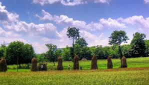 Image result for poze poienile izei maramures