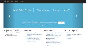 How to setup ASP.NET Core 2.1 on Linux in under 10 minutes