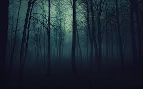 dark forest wallpaper 1920x1080. Fine 1920x1080 HD Wallpaper  Background Image ID342360 1920x1200 Dark Forest In 1920x1080 A