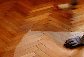 ... Laminate Wood Flooring Prices Wonderful 25 How Much On Average Does Laminate  Flooring Cost | Wooden ... Awesome Ideas