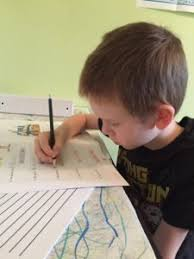 top reasons not to homeschool your child setting down roots so here s where i want to hear some stories what s the craziest thing anyone has asked you or assumed about your homeschooling children