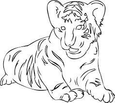 Semplice Tigre Da Colorare Disegni Da Colorare E Stampare Gratis